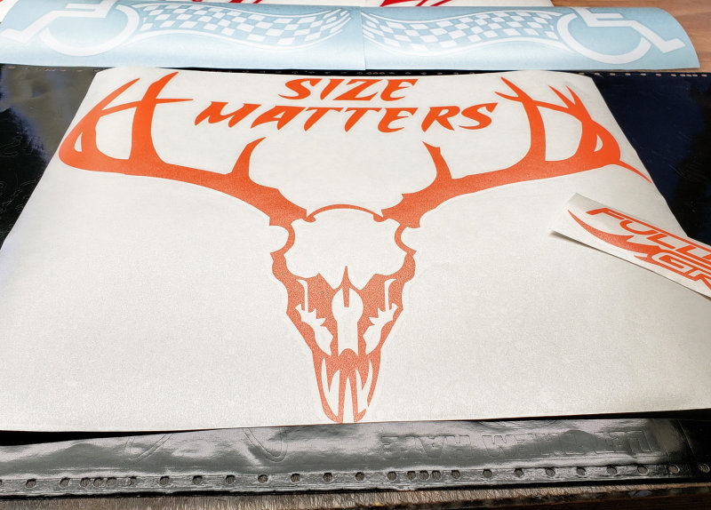 Size Matters Deer Skull Decal
