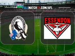 Collingwood Magpies vs Essendon Bombers