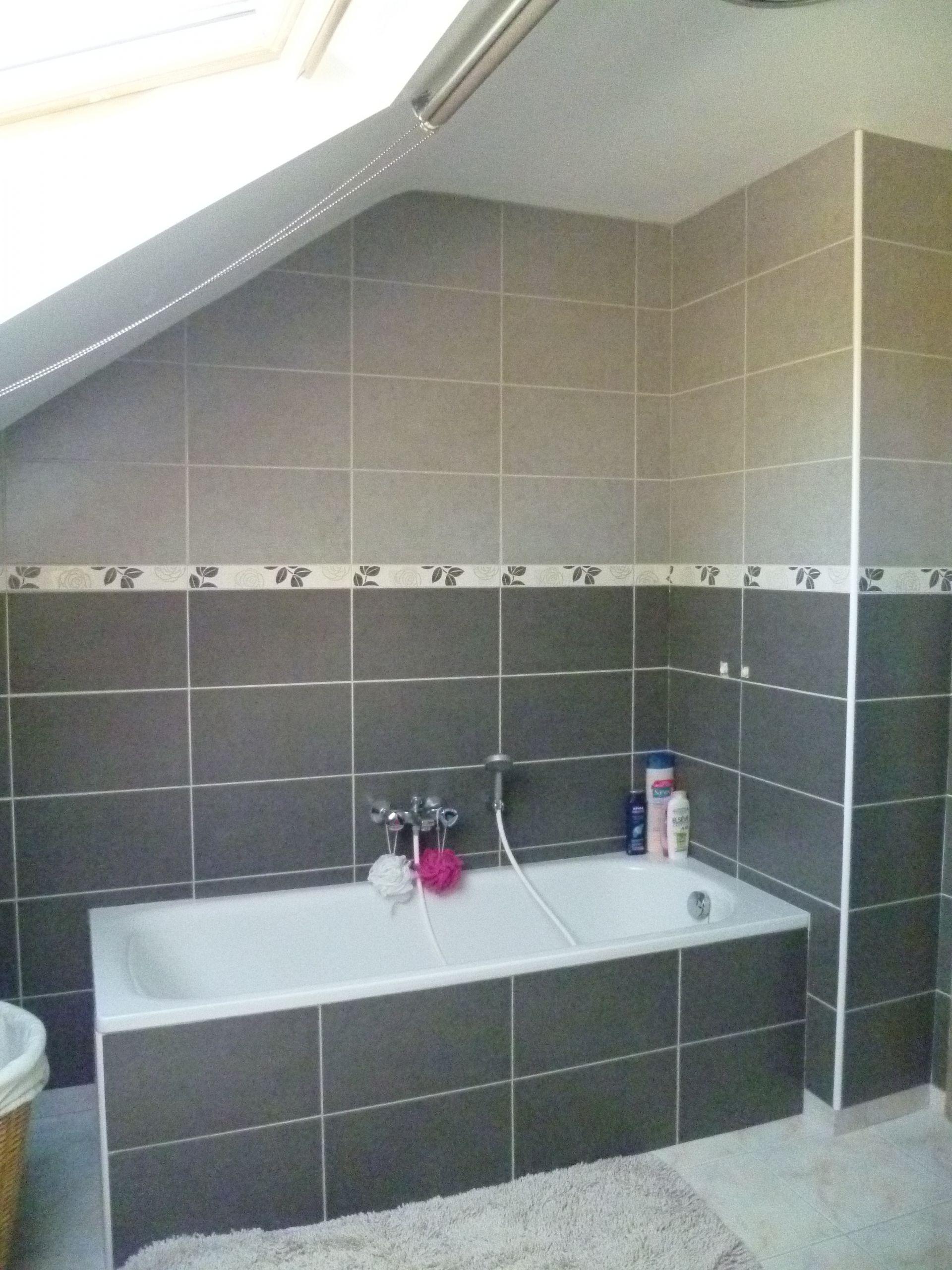 gris ides carrelage salle de bain
