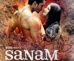 Sanam Teri Kasam 2016 Hindi Movie Free Download
