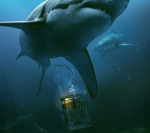 In The Deep 2016 Movie Watch Online Free