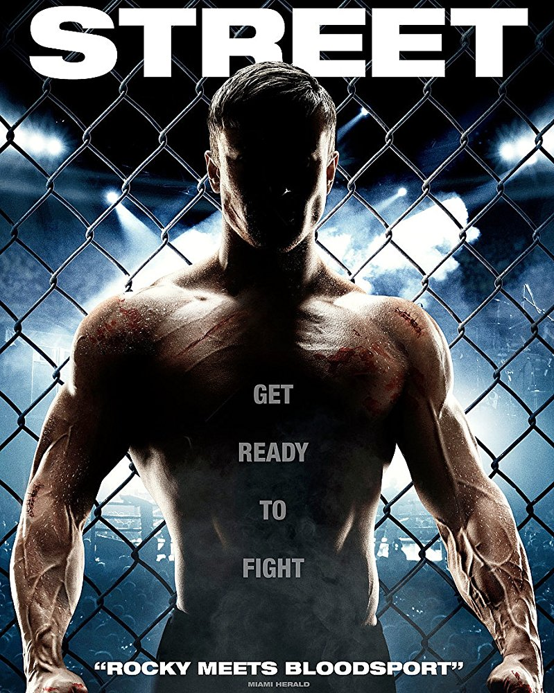 Street 2015 Hindi Dubbed Movie Free Download