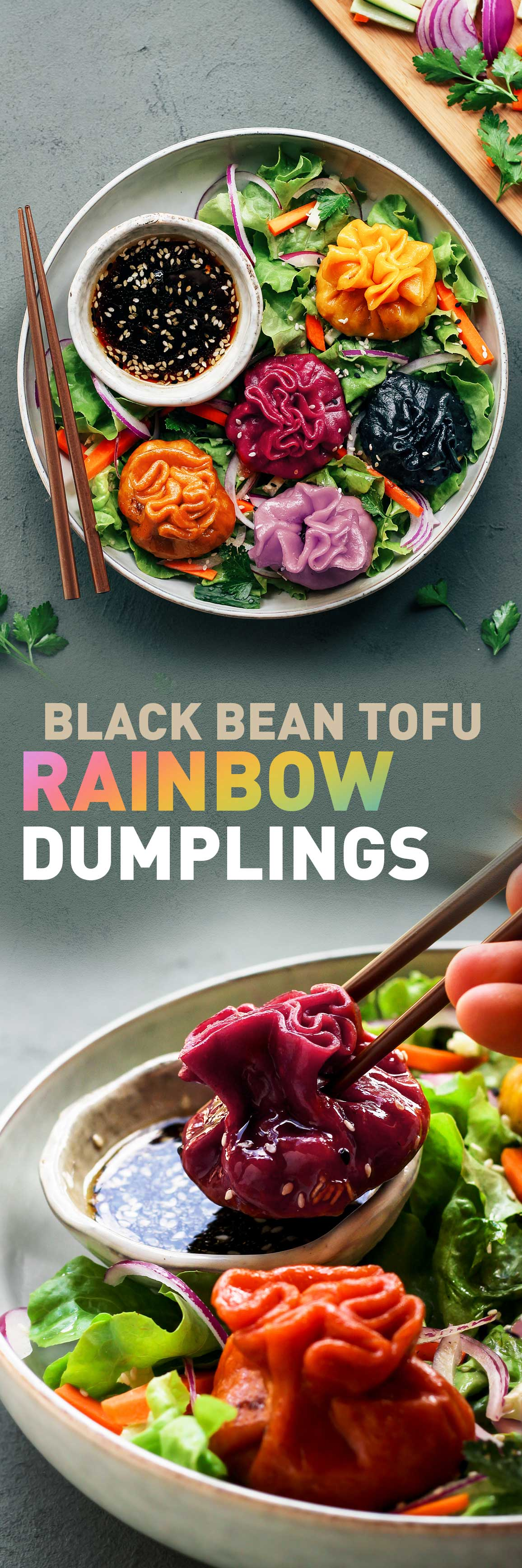 Vegan Black Bean Tofu Dumplings
