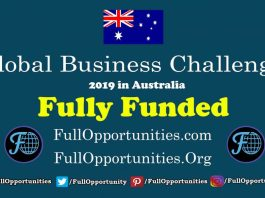 Global Business Challenge