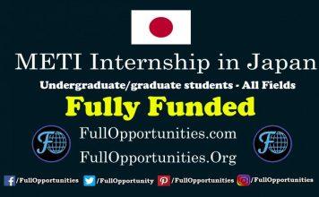 METI Internship in Japan