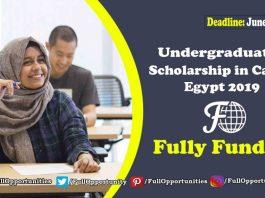 Undergraduate scholarship at American University In Cairo, Egypt