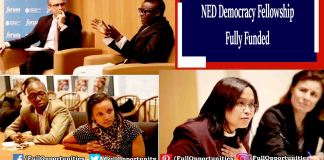 NED Democracy Fellowship