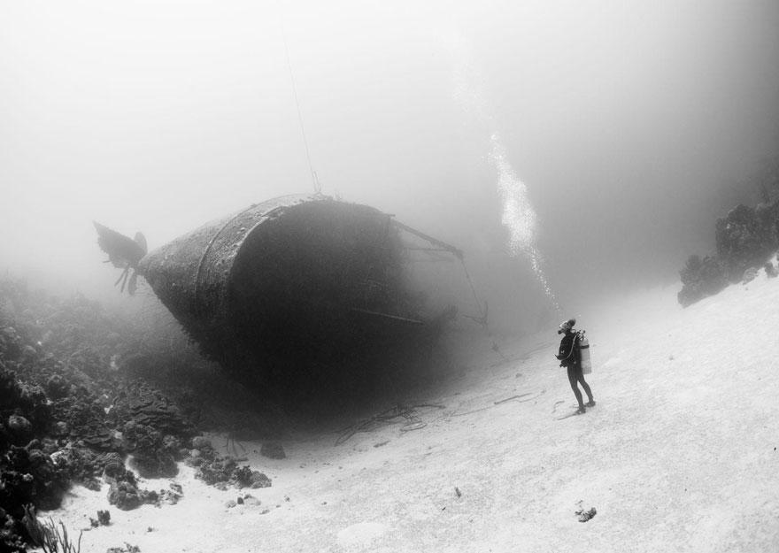 20. Затонувшее судно «Hilma Hooke», карибский остров Бонайре. Фото: Marc Henauer.