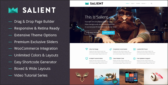 salient-responsive-multi-purpose-wordpress-theme-v5.5.4.750x0n