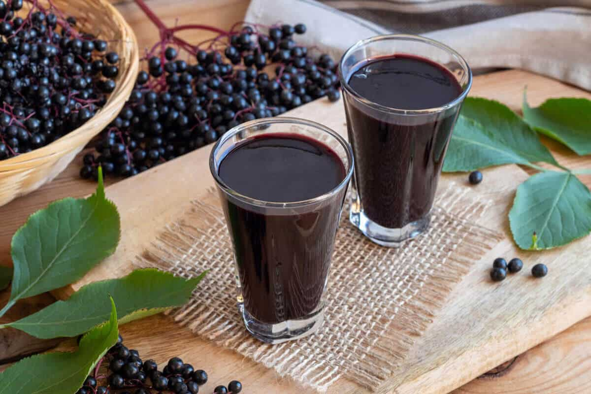 Why You Need Elderberry This Cold And Flu Season Fullscript