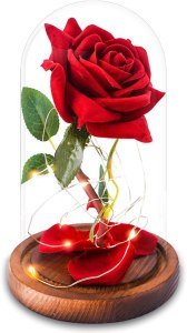 Review: AGGUT Beauty and the Beast Rose