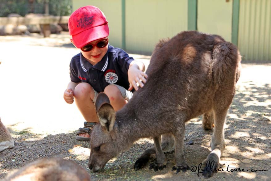 Family experience of traveling to Australia with young children