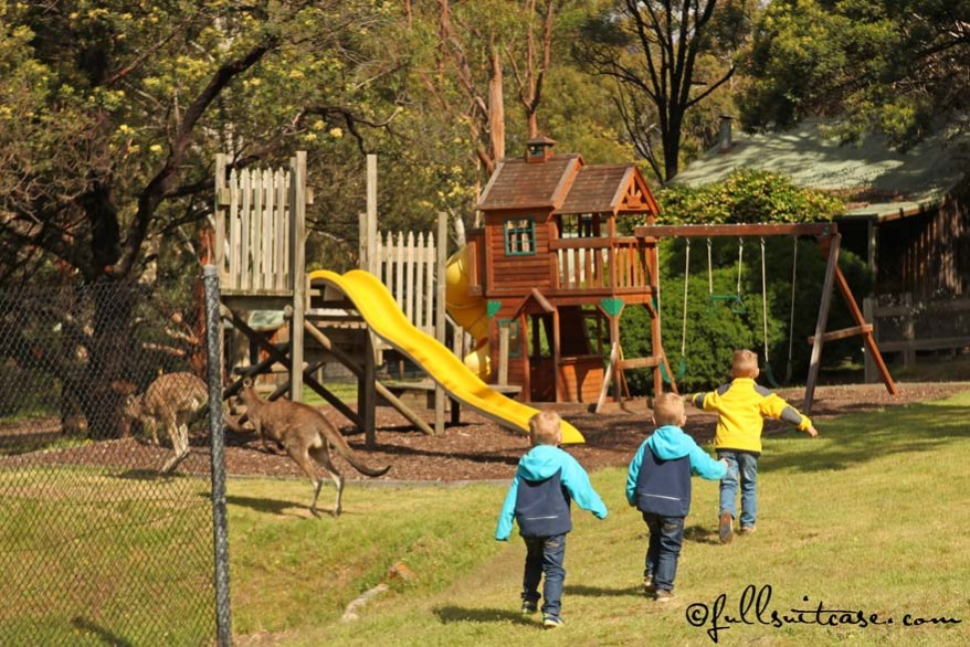 Family trip to Australia with young kids