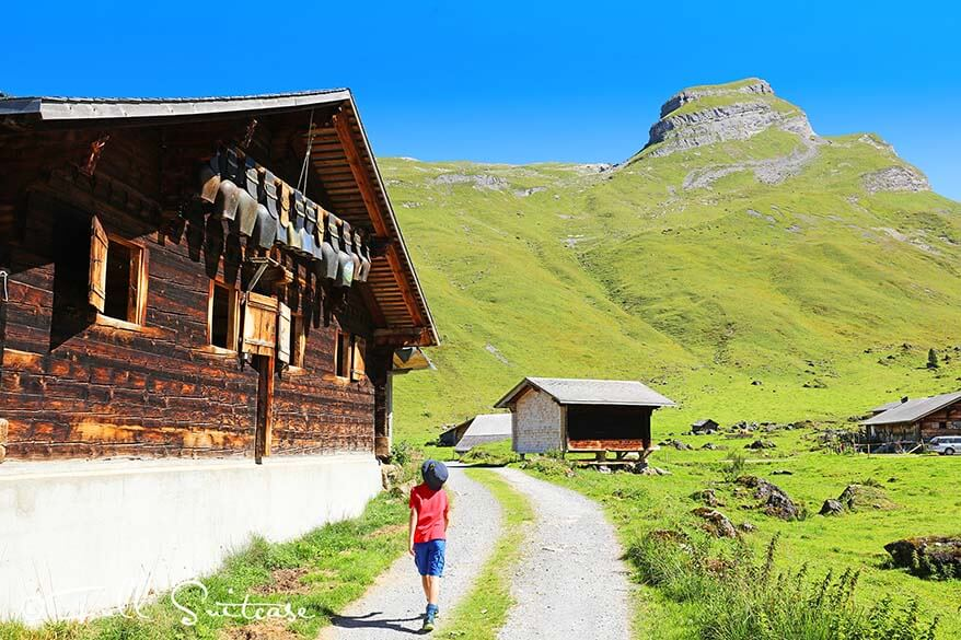 Hiking at Engstlenalp Switzerland with kids