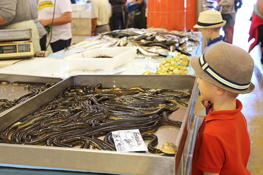 Kids loved visiting a fish market in Portugal
