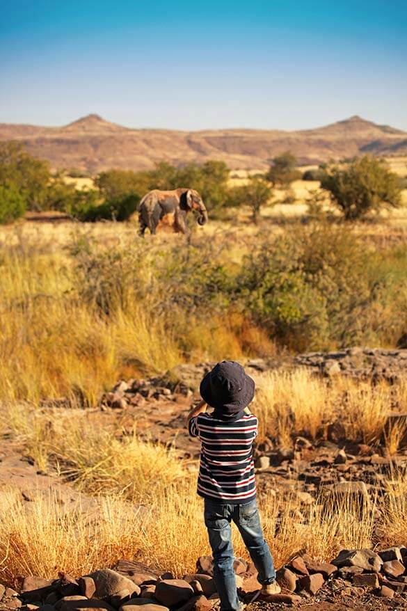 All you may want to know about taking young children on safari in Africa