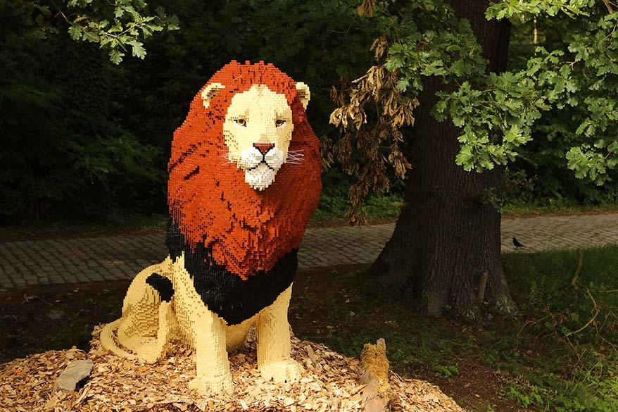 Art With Lego Bricks - Lion in Planckendeal animal park Belgium