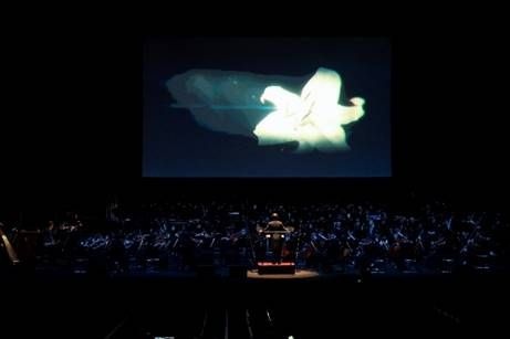 NieR:Orchestra Concert Playing music