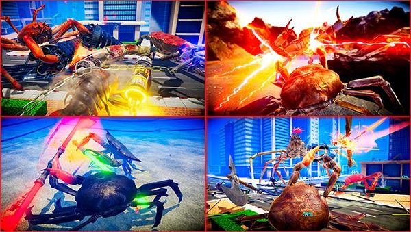 Fight crab artwork