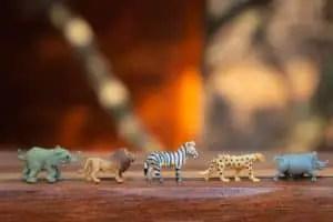 animals line up game