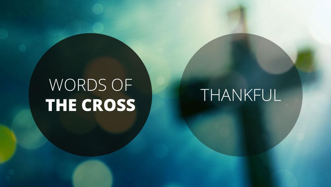 Words of the Cross: Thankful | Revelation 5:1-14 | Andrew Gardner