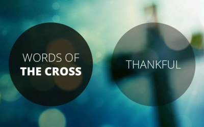 Words of the Cross: Thankful | Revelation 5:1-14 | Andrew Gardner