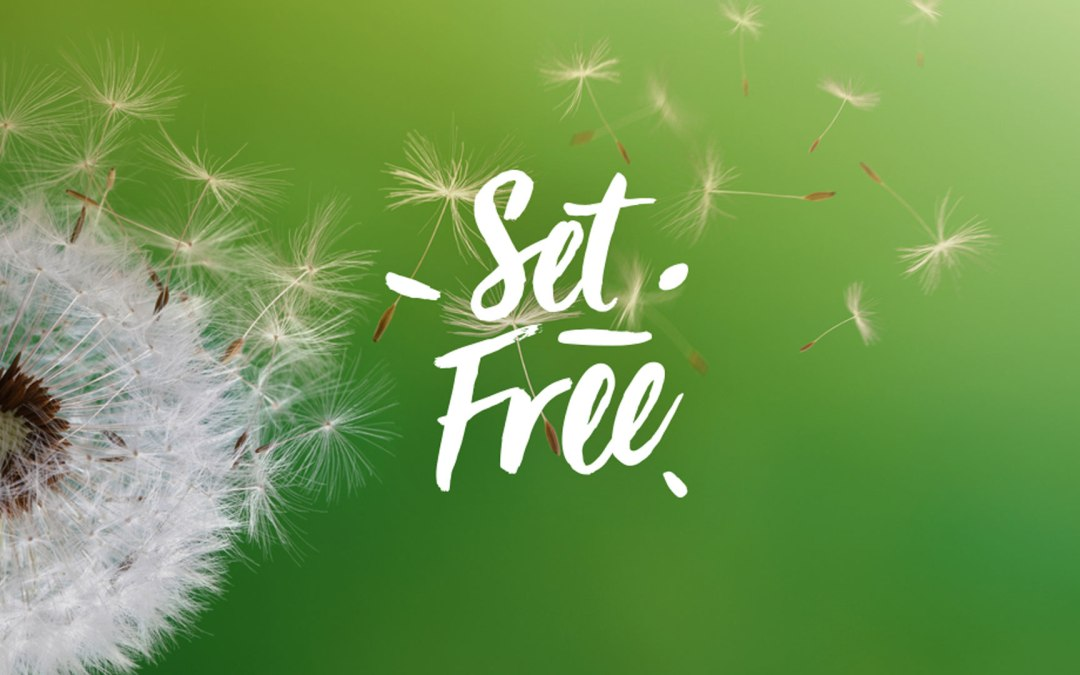 Set Free to be a Son | Romans 8 | Andrew Gardner
