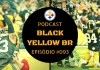Browns at Steelers - Semana 08 Temporada 2018