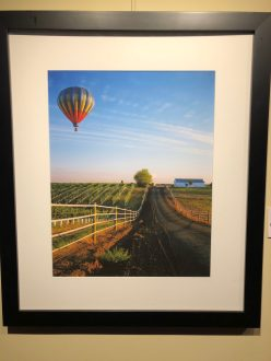 """Down at the Vineyard"" by Rich Saxon"