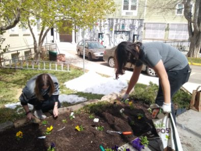 spring cleanup 2021 3
