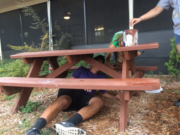 painting the bench, all of it