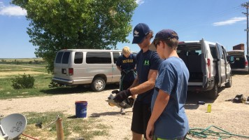 Copper teaching Jack how to cut wood