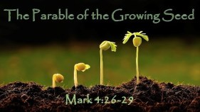 Parable-of-Growing-Seed
