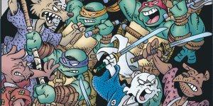 TMNT & Usagi Yojimbo