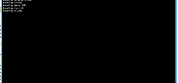 Установка VMware Esxi на флешку-023