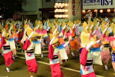 徳島阿波踊りの日程・アクセス・駐車場紹介!混雑を回避するには?