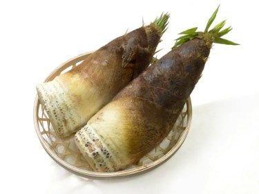筍の茹で方は圧力鍋で時間短縮!米ぬかは使わない?大きい場合は?