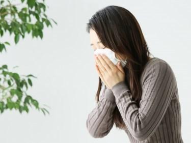 花粉症は冬にもなるの?種類や症状は?病院に行く以外の対策はある?