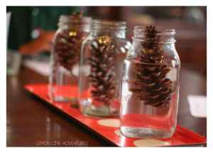Fall-Science-Experiment-for-Kids-with-Pinecones