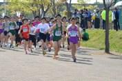 tubame_marathon_20180429_0016