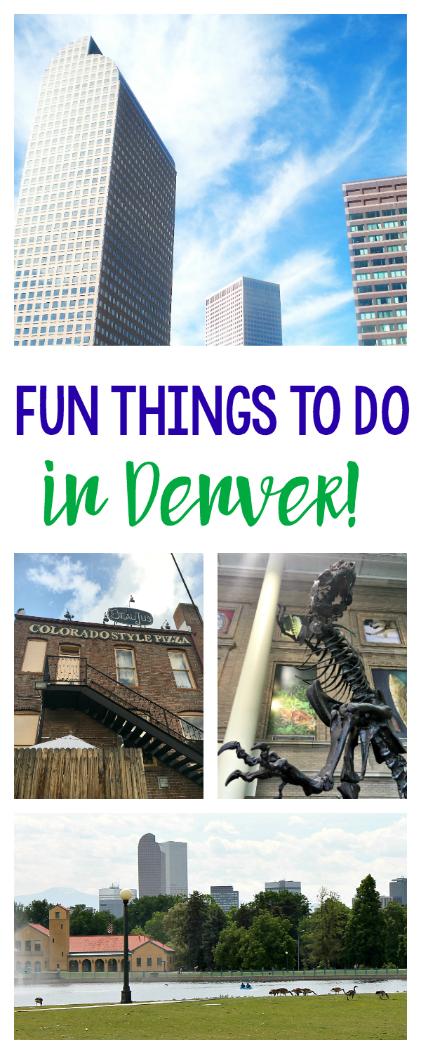 Fun Things to do in Denver When You Visit