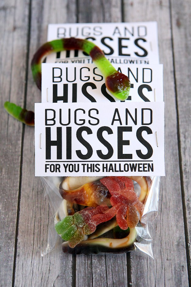 bugs-and-hisses-tags