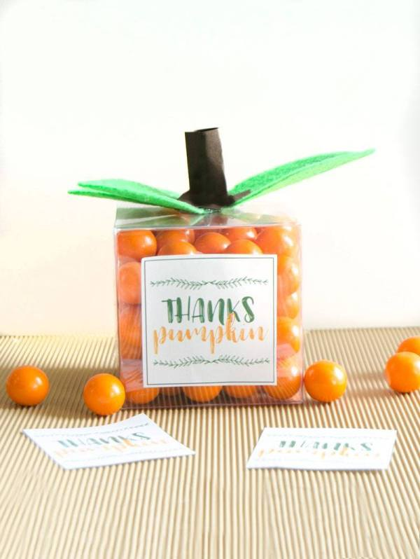 Pumpkin Favor for Thanksgiving