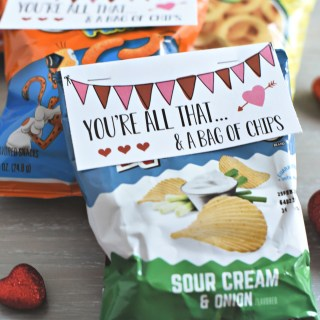 All That and a Bag of Chips Valentine-This cute Valentine idea is great as a printable class Valentine to pass out at school or as a small Valentine gift to surprise your kids with. All you've got to do is print the tag and add it to a bag of chips. #valentine #valentines #valentinesday