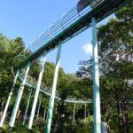 親子で楽しむ仙元山ローラー滑り台