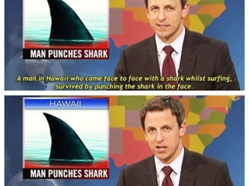 Man Punches Shark