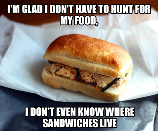 funny-sandwiches-food-hunt-human