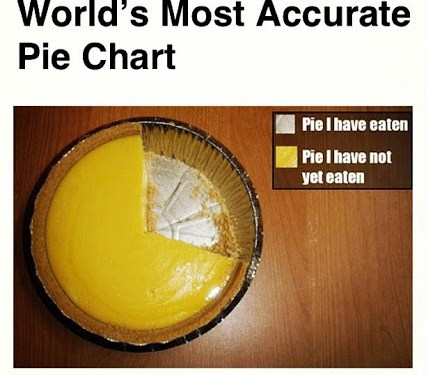 World's Most Acurate Pie Chart