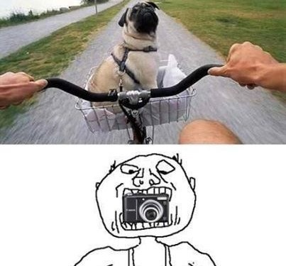 How he took the photo?!