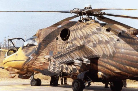 afganistan-bird-helicopter
